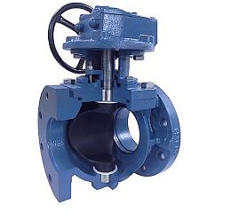 eccentric plug valve photo